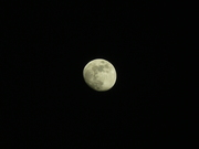 The Moon, from my window (7)