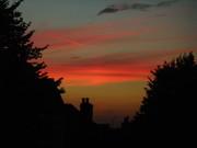 Sunset (5)