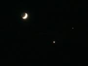 DSC00304 Venus was just sparkling tonight