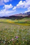 tibet-china-scenery