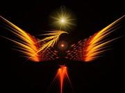 phoenixlg
