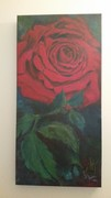 """Big Red Rose"""
