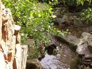 Niaga River
