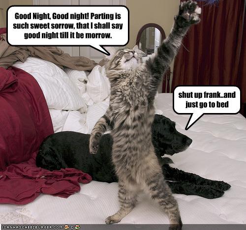 cat-recites-a-monologue