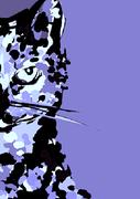 Ice cat super cat! Winter January 14