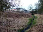 West of Towcester station site