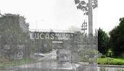 The Lucas Bridge
