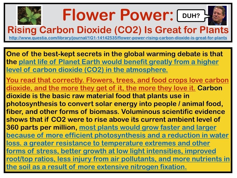 Doubling World-Wide Carbon Dioxide (CO2) levels would be great for nearly all Plants & Vegetation, Overlooked by Wannabe / Wishes He Could Be A Real Scientist, Al Gore