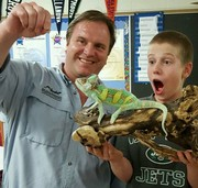 Veiled Chameleon at Cloonan Middle School