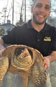 Common Snapping Turtle with Mike