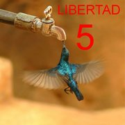 LIBERTAD PARA LOS 5 HEROES LIBERTAD