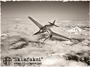 Skinfaksi_001