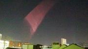 2013.12.24  ピンクの。