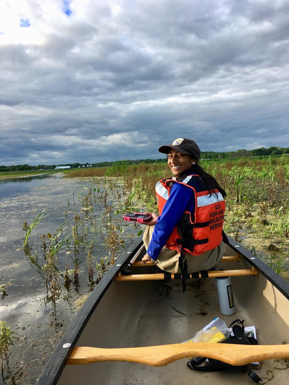 marsh survey