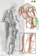 Rough Pictorial analysis of Prud'hon drawing