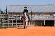 Jessie's Number 1 Horse