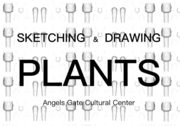 Sketching And Drawing Plants