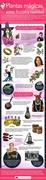 Firefly – Infografía de Magicvaporizers