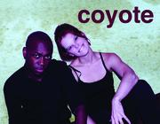 Coyote Postcard FRONT V3
