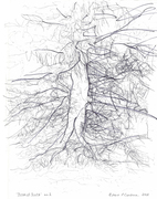 'Tree of Souls' - 2011-2014 (Selected Drawings from a Suite of 68) + Added Experimental Drawings - 2017-2019