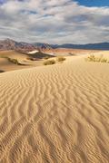 Day Dunes 2071