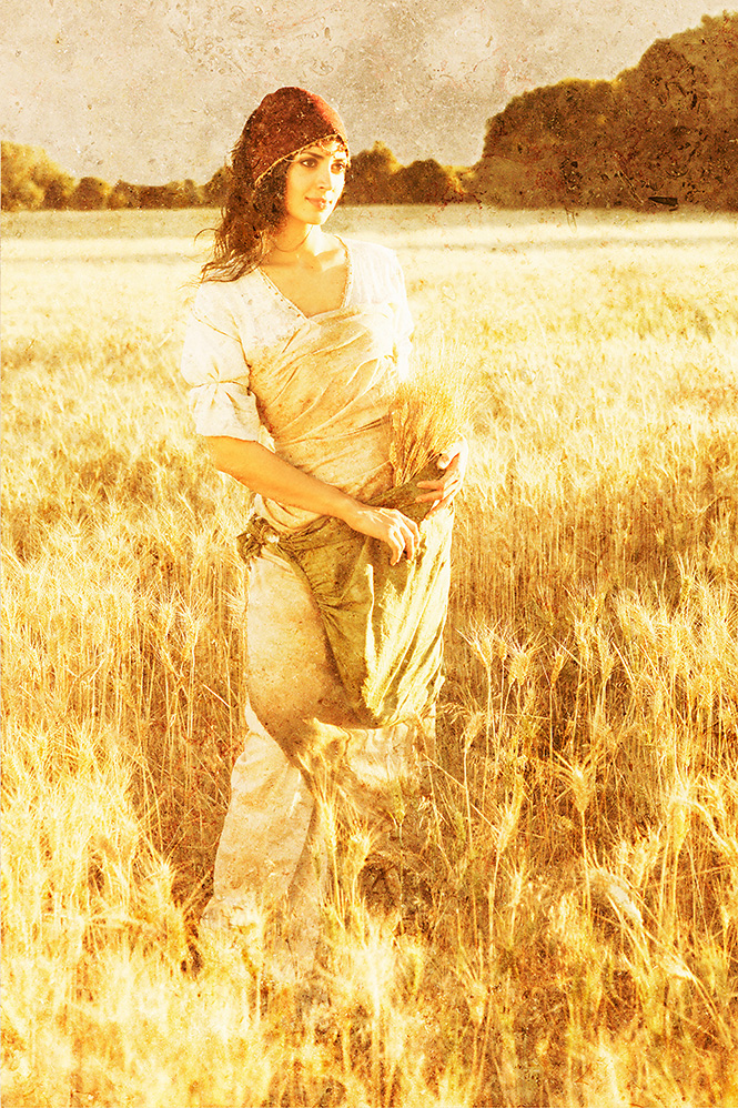 Ruth Gleaning Near Field - Stone version
