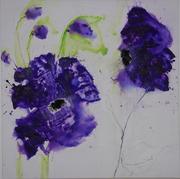 violet 1.1