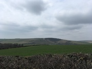 Cuckmere Valley, Friston Forest and 4 of the Seven Sisters Circular