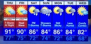 The 7 Day Forecast for Toms River
