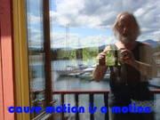 WDYDWYD_cause_motion