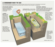 A greener way to go