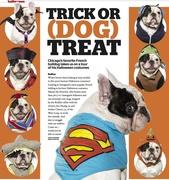 Trick or Dog Treat