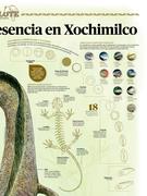 Reduce 99.5% su presencia en Xochimilco (2)