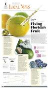 Florida's fruit