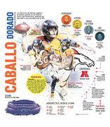 Caballo-dorado-Broncos