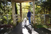 Daddy and Me in Williams Park