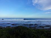 Winter in the Cape