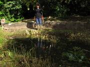 Pond Maintenance October 2014