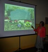 Jenny Morris Wellington Bomber Talk