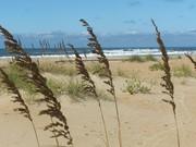 hatteras island beach