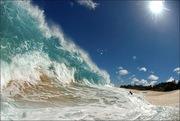 Splash - stunning shot