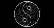 Ying Yang Polarity