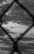 fence_sky