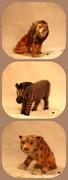 lionstigerszebras oh my!
