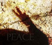 peace shadow