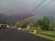 Manoa Rainbow