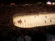 Red Wings 2011