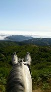 Quinta do Riacho - Madeira