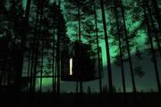 Suécia - Tree Hotel