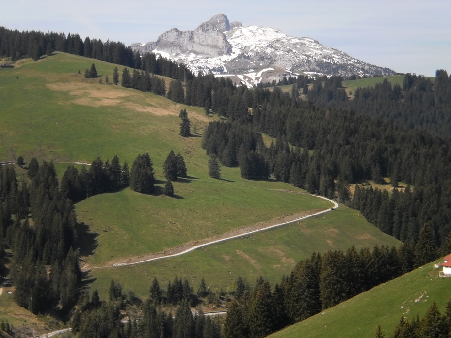Col des Mosses